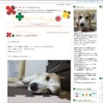 FC2ブログ画面