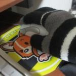 マウスと手袋