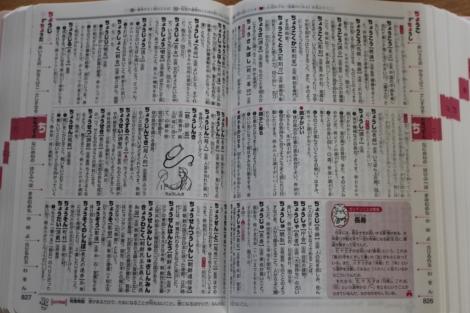 国語辞典 開いたところ