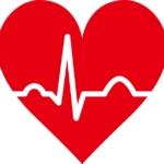 アイキャッチ画像electro-cardiogram