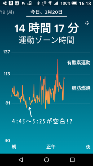 Fitbit心拍数データ